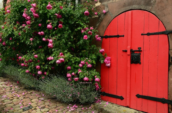 roses, thorns, red door